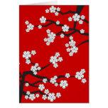 White Cherry Blossoms Sakura Spring Flowers Branch Card