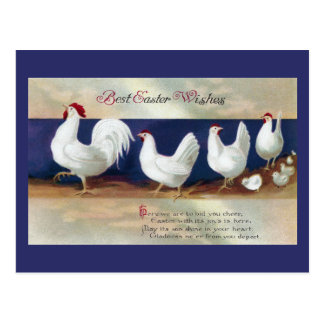 White Chicken Easter Parade Postcard