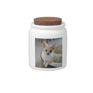 White Chihuahua Candy Jar