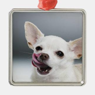 White Chihuahua licking lips Square Metal Christmas Ornament