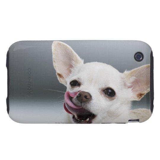 White Chihuahua licking lips Tough iPhone 3 Case