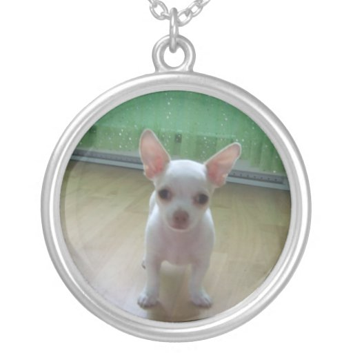 White Chihuahua Necklace