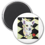 White Chihuahua with Red Ball on Checkerboard Refrigerator Magnets