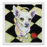 White Chihuahua with Red Ball Print