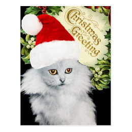 WHITE CHRISTMAS CAT WITH SANTA CLAUS HAT POSTCARD