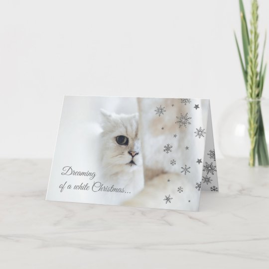 White Christmas Cute Cat Holiday Card Zazzle Com