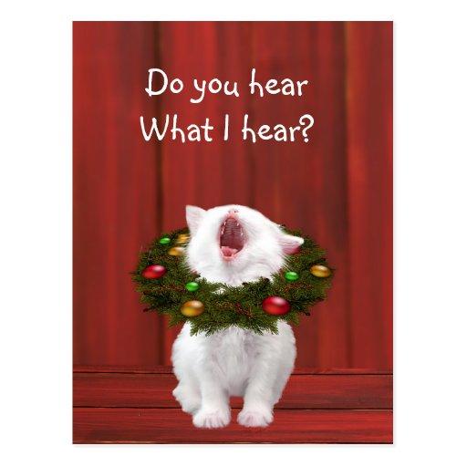 White Christmas kitten Postcard