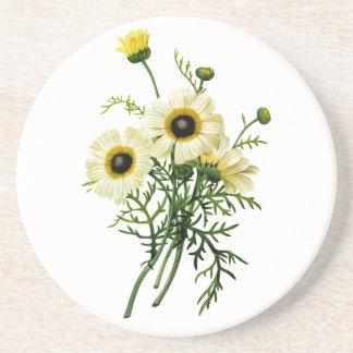 White Chrysanthemum by Pierre Joseph Redoute Coaster