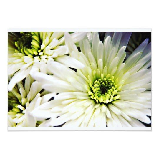 White Chrysanthemum invitations