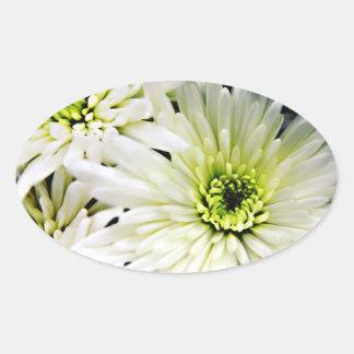 White Chrysanthemum oval stickers