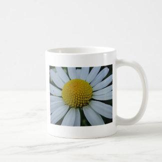 White chrysanthemum with yellow centre coffee mug