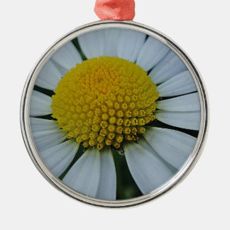 White chrysanthemum with yellow centre metal ornament