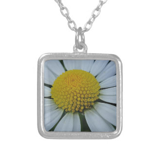 White chrysanthemum with yellow centre necklaces