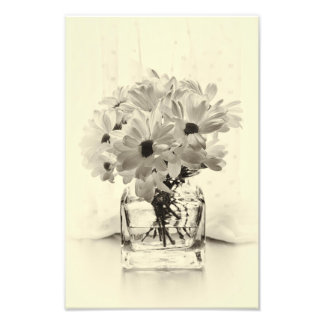 White Chrysanthemums Photo Print