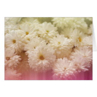 White Chrysanthemums with Pink Light Leaks Card