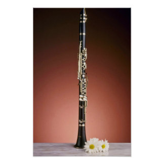 white Clarinet flowers Poster