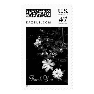 White Clematis 1 Sympathy Thank You Postage