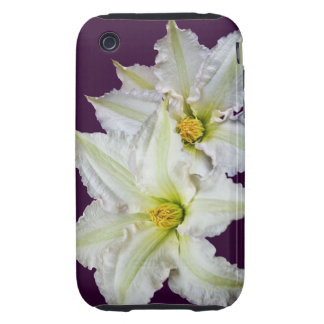 White Clematis iPhone 3 Tough Cases