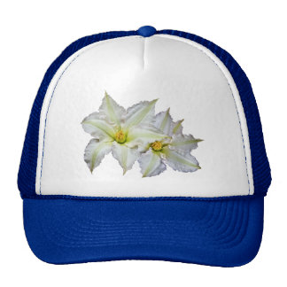 White Clematis Hat