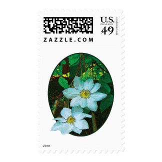 White Clematis Postage