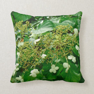 White Climbing Hydrangea - Pillow