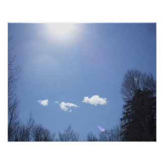 White Clouds, Blue sky and Tree  Tops Poster