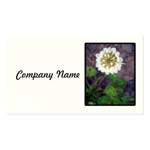 White Clover Blossom Business Card