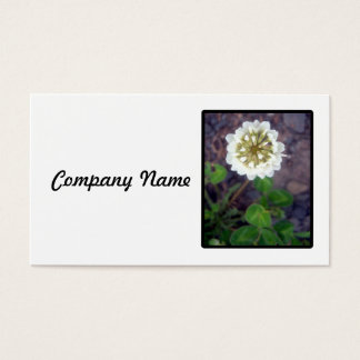 White Clover Blossom Business Card