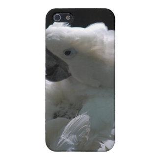 White Cockatoo Bird iPhone 4 Case
