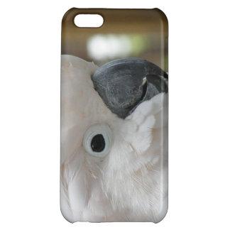 White Cockatoo iPhone 5C Cover