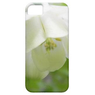White Columbine Flower  - Aquilegia iPhone SE/5/5s Case