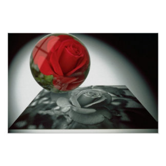 White Computer manipulated rose flowers Print