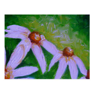 WHITE CONE FLOWERS POSTCARD