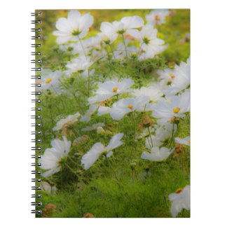 White Cosmos Flowers Notebook