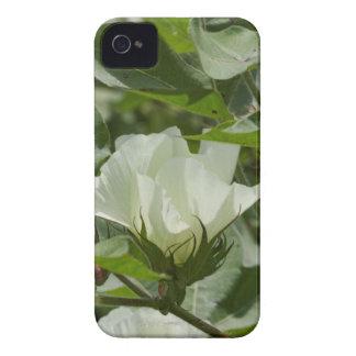 White Cotton Crop Blossom iPhone 4 Case