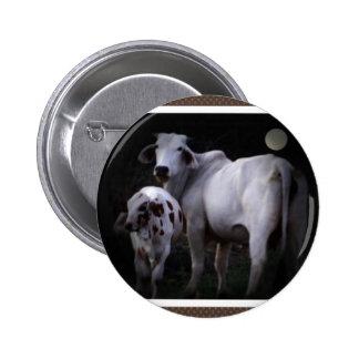 White Cow and Calf Pinback Button