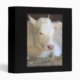 White Cow binder