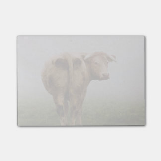 White Cow Bull looking Back in a Foggy Field Post-it Notes