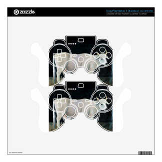 White cow on a black background by Niko Pirosmani Decal For PS3 Controller