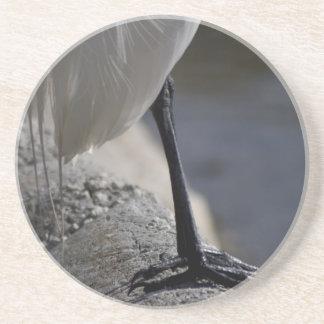 White Crane Bird Feet Photo Coaster