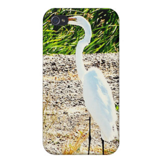 White Crane Covers For iPhone 4