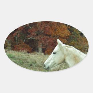 White Cream Horse in an Autumn Field Oval Sticker