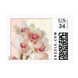 White cream orchids in full bloom Wedding Stamp