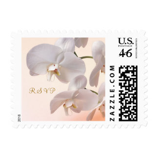 White - cream Orchids RSVP Postage