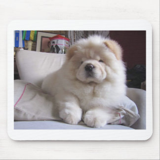 White Cream Puff Chow Chow Puppy Mouse Pad