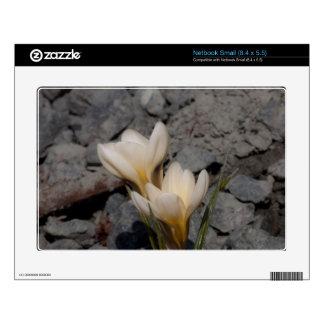 White Crocus Small Netbook Decals