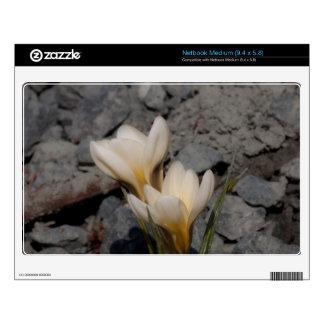 White Crocus Netbook Skin