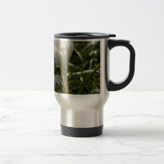 White Crosus Mug