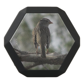 White-crowned Sparrow Black Bluetooth Speaker