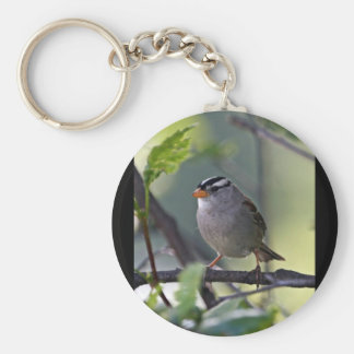 White-crowned Sparrow Keychain